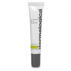 Купить Dermalogica Concealing Spot Treatment