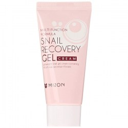 Купить Mizon Multi Function Formula Snail Recovery Gel Cream Киев, Украина