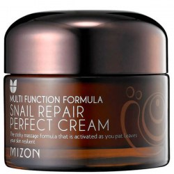 Купить Mizon Multi Function Formula Snail Repair Perfect Cream Киев, Украина